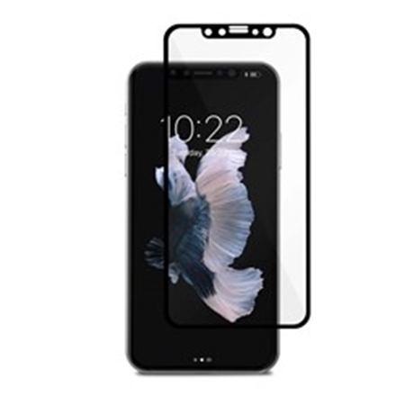 Picture of Moshi IonGlass for iPhone Xs/X - Black